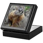 Marmot Keepsake Box