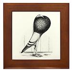 Swing Pouter Pigeon Framed Tile