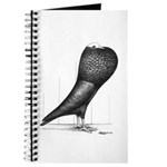 Silesian Pouter Pigeon Journal