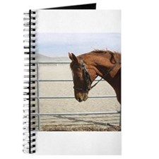 """Chestnut Mare"" Journal"
