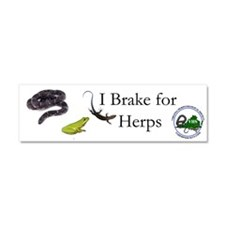 Cute Reptile Car Magnet 10 x 3