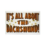 Dachshund Lover Rectangle Magnet (100 pack)
