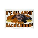 Dachshund Lover Rectangle Magnet (10 pack)