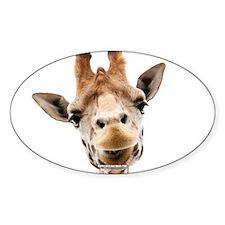 Hangover Movie Part 3 Giraffe Decal