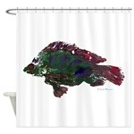 Bright Fish Print Shower Curtain