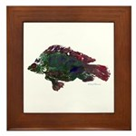 Bright Fish Print Framed Tile