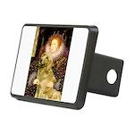 MP-QUEEN-Golden-Banjo-light.png Rectangular Hitch