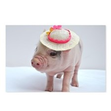 Micro pig wearing Summer hat Postcards (Package of