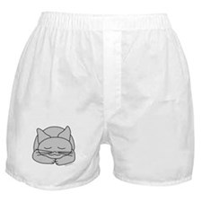 Sleeping Gray Cat Boxer Shorts