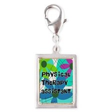 physical therapist asst 1 Charms
