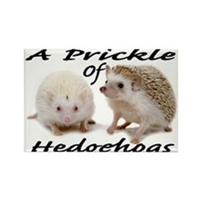 Prickle of Hedgehogs Rectangle Magnet
