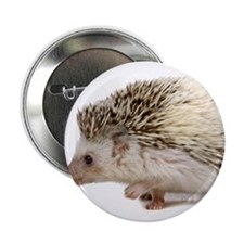 "Rosie Hedgehog 2.25"" Button"