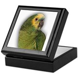 Amazon Blue Front Parrot Keepsake Box