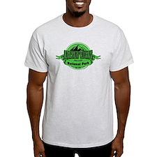 carlsbad caverns 4 T-Shirt
