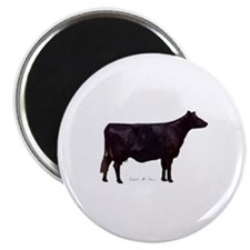 Angus Beef Cow Magnet