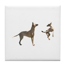 Tile Pharaoh Hound Coaster