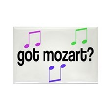 Got Mozart Rectangle Magnet