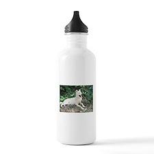 """""""Summertime Bird Watching"""" Water Bottle"""