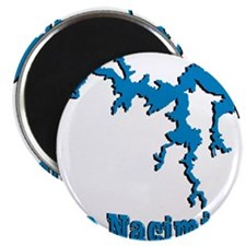 NACI DRAGON_BLUE2 SAMPLE Magnet