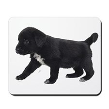 Labrador Retriever Puppy Mousepad