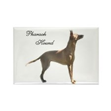 Unique Pharaoh hound Rectangle Magnet (10 pack)