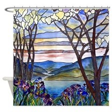 Frank Memorial Window Shower Curtain