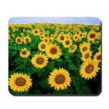 Sunflower Mousepad