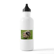 Little Spotty micro pig Sports Water Bottle