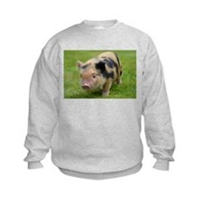 Little Spotty micro pig Sweatshirt