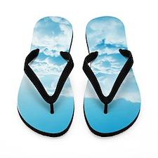Cloud Nine Flip Flops