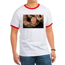 Copperhead Snake T