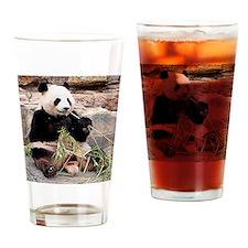 Panda at zoo Drinking Glass