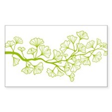 ginkgo tree with green leaves Decal