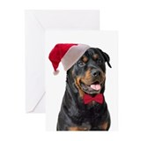 Rottweiler christmas Greeting Cards (20 Pack)