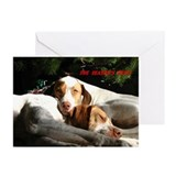 """Season's Best"" Holiday Cards (Pk of 10)"