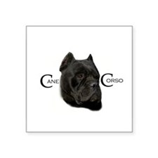 Handsome Black Cane Corso Oval Sticker