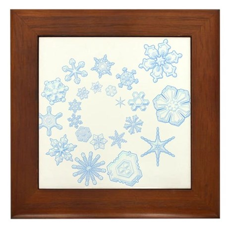 Flurry Framed Tile