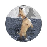 Dancing Dachshund dog  Ornament (Round)