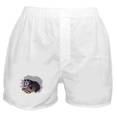 Baby Possum Boxer Shorts