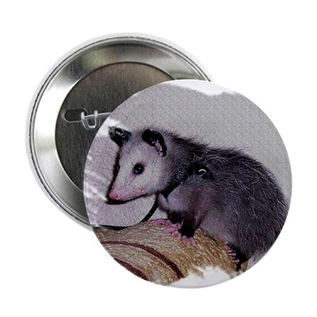 "Baby Possum 2.25"" Button (100 pack)"