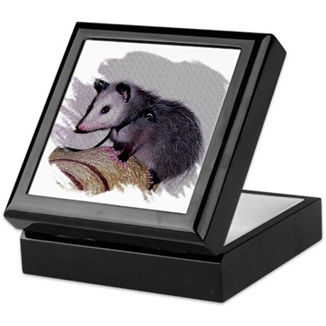 Baby Possum Keepsake Box