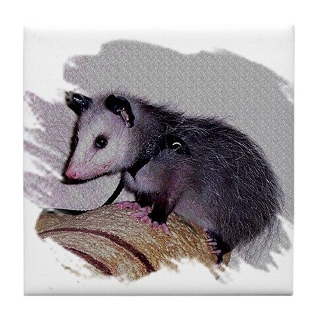 Baby Possum Tile Coaster