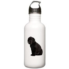 Labrador Retriever Water Bottle