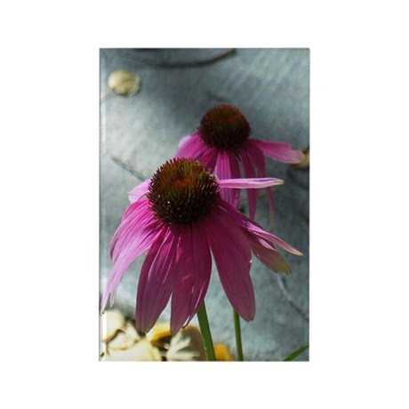 Windflower Rectangle Magnet (10 pack)