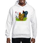 Assorted Cochins Hooded Sweatshirt