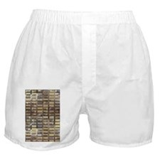 Skyscraper by Day Boxer Shorts