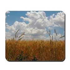 'Almost Harvest' Summer Wheat Custom Mousepad