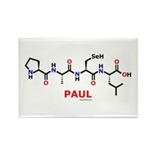 Paul molecularshirts.com Rectangle Magnet