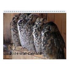 International Owl Center 2014 Wall Calendar