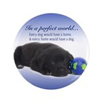 """In A Perfect World (Lab) 3.5"""" Button"""